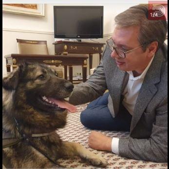 ФОТО: Вучиќ на работа – првата средба со кучето Пако