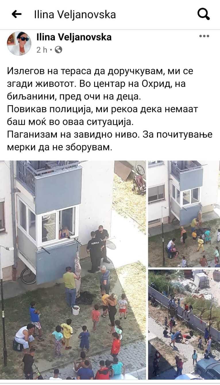 Среде Охрид се колат животни за Курбан Бајрам, полицијата не им може ништо
