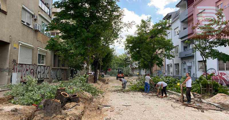 На ул. Орце Николов се исечени 13 дрвја оти беа стари и болни, веднаш ќе засадиме нови, вели Богдановиќ
